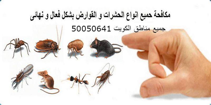 مكافحه حشرات بالكويت